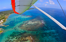 vol pendulaire Guadeloupe